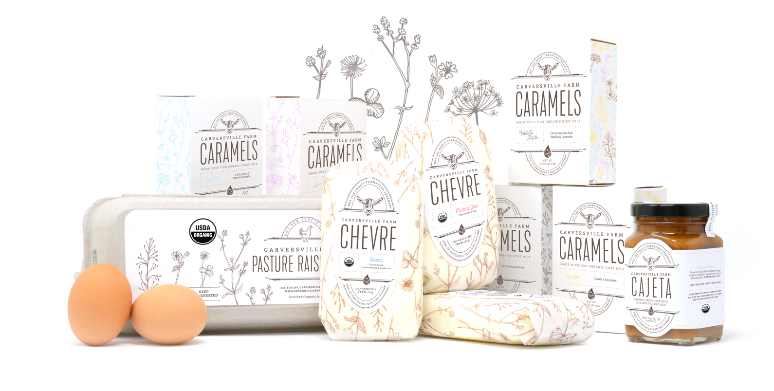 Packaging Design for Organic Food Company
