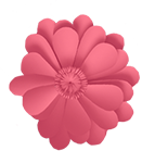 Mend Seltzer Push10 Banner Flower