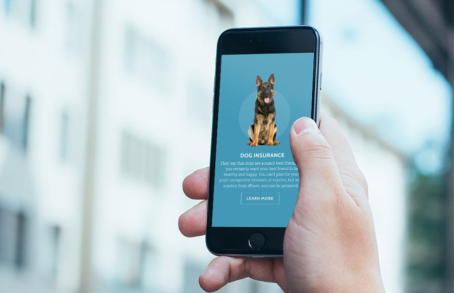 Dog Insurance Website on Mobile Device