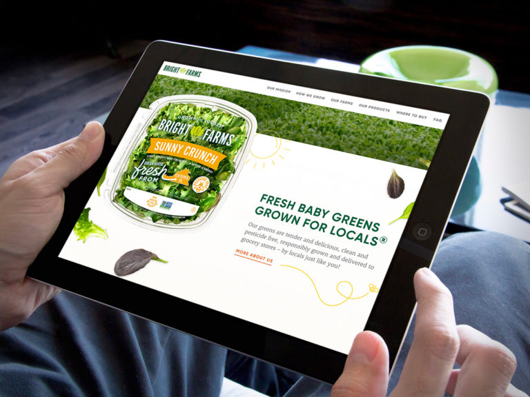 Web Design for Organic Food and Beverage Brands
