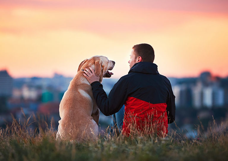 Golden Retriver and Male Owner sitting in Grass