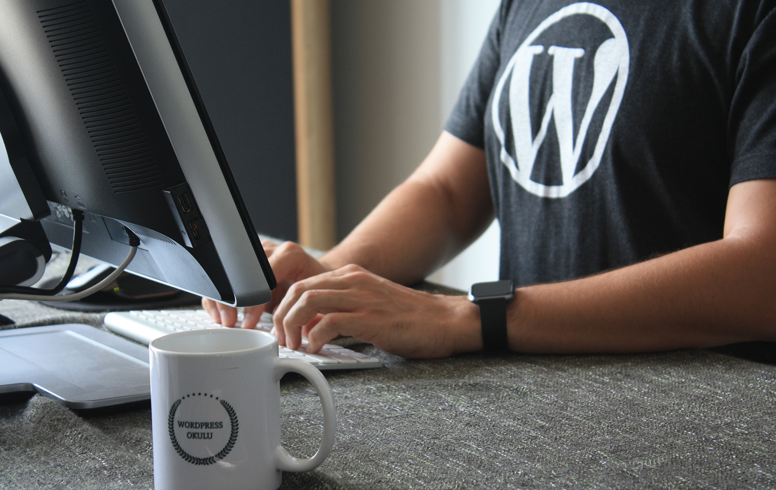 WordPress Security Issues Header Image