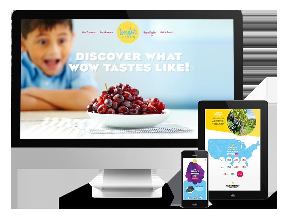 Responsive Website Design for CPG brands