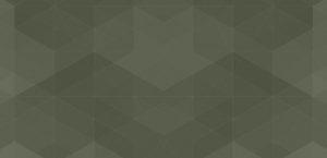 Olive Green graphic design background for Veritable website